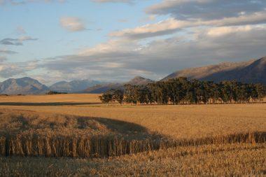country landscape bartholomeus klip sonia cabano blog eatdrinkcapetown