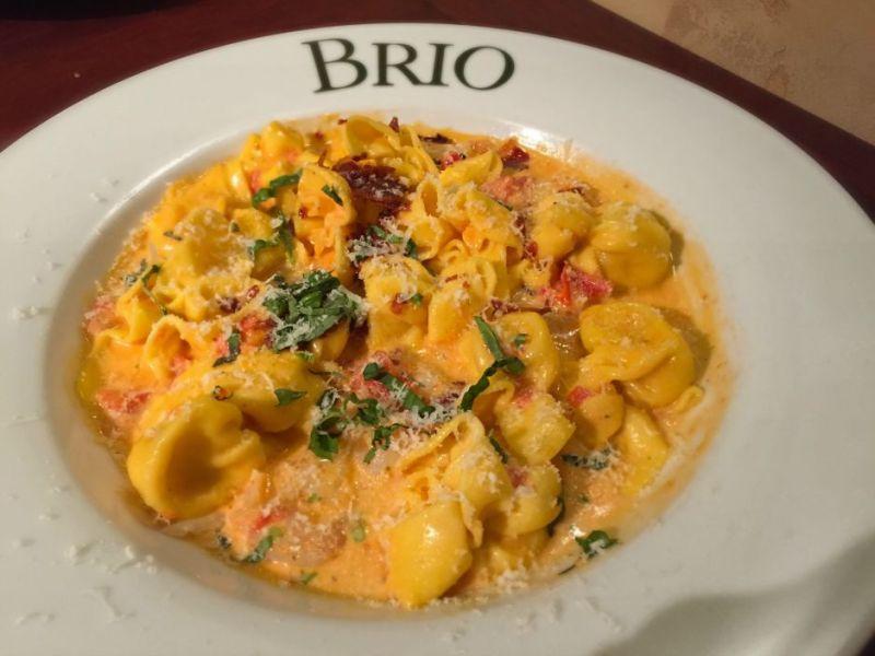 brio4