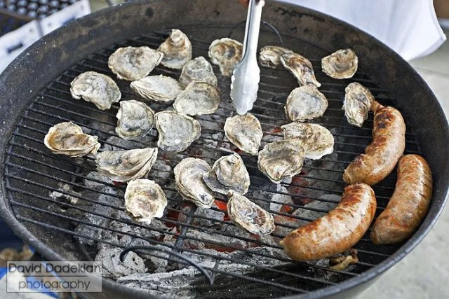 Grilling Plum Point Oysters and 'Round the Bend Farm pork & wild foraged pine sausage