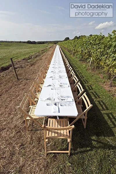 Outstanding in the Field table is set along the Westport Rivers grape vineyard