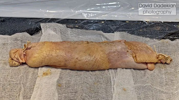 Wrapped and tied galantine