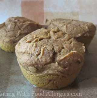 Allergy free recipes eating with food allergies wheat free pumpkin muffins forumfinder Gallery