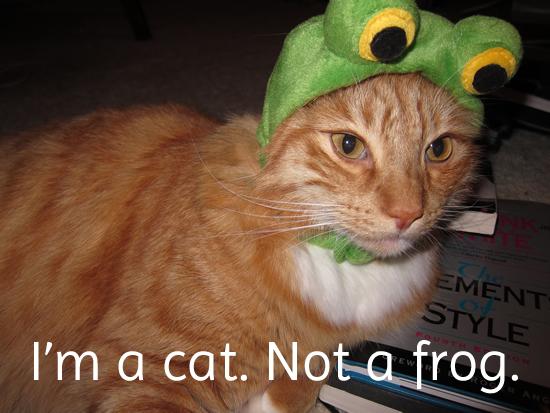 I'm a cat. Not a frog