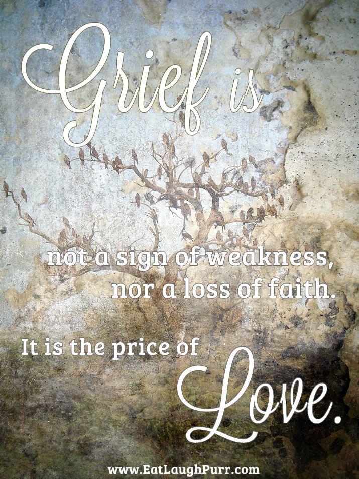 Grief is not a sign of weakness, nor a loss of faith. It is the price of love.
