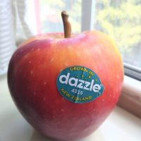 What is a Dazzle Apple?