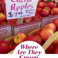 Where are Gala Apples Grown?
