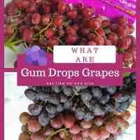Gum Drops Grapes
