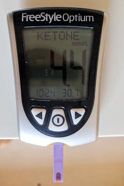 Ketone reading during fast mimicking diet.