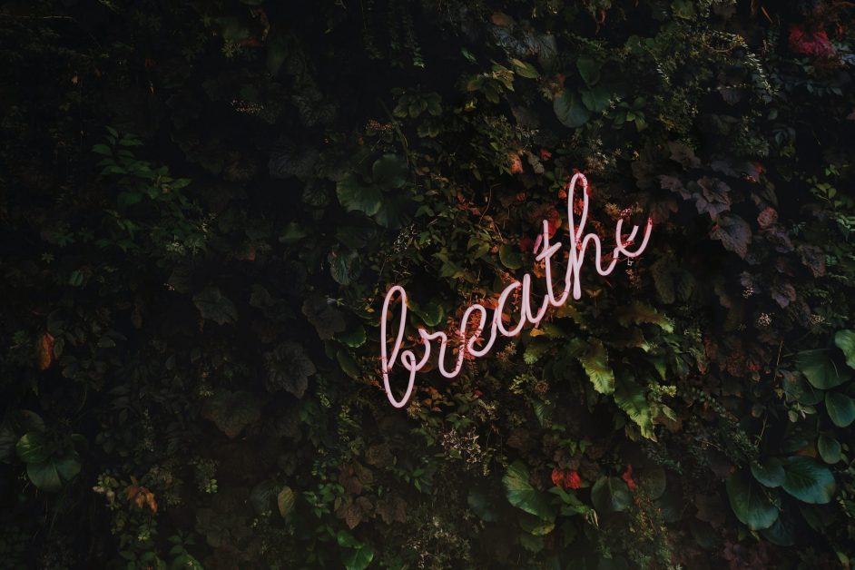 Neon Breathe Sign on Ivy Covered Wall