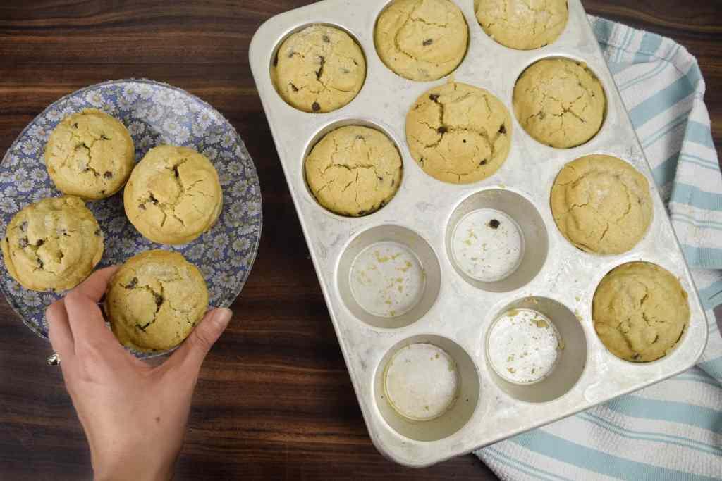 vegan vanilla and chocolate muffin
