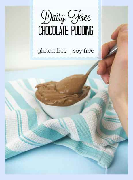 dairy free chocolate pudding picture