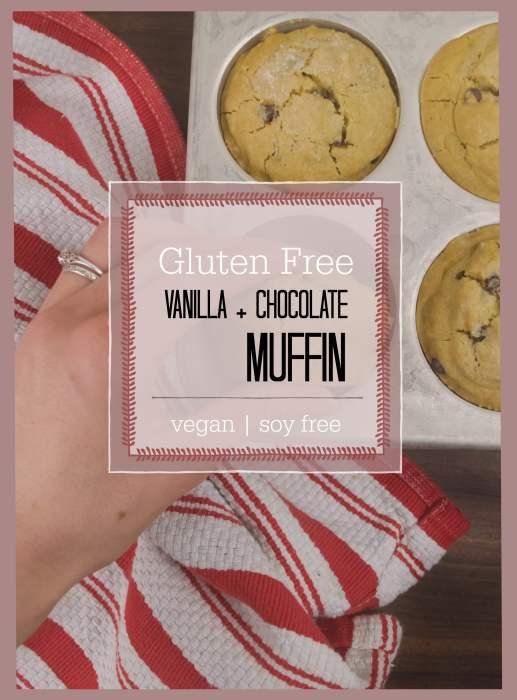 vanilla and chocolate chip muffin