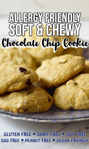 Allergy Friendly Soft & Chewy Chocolate Chip Cookie