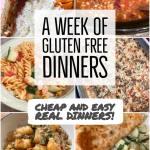 a week of gluten free dinners