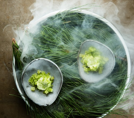 The Test Kitchen_Pine needle granita with lime compressed cucumber and gin and tonic jelly