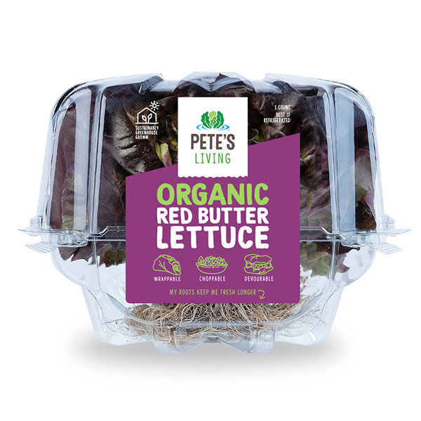 organic red butter lettuce clamshell