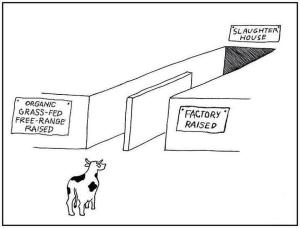 humane meat cartoon
