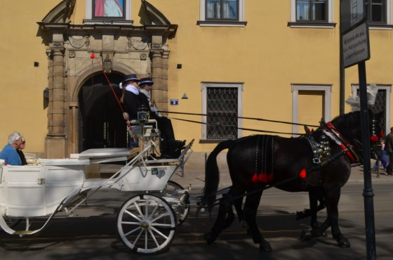 Horse-drawn carriage rides are available starting in the Main Square