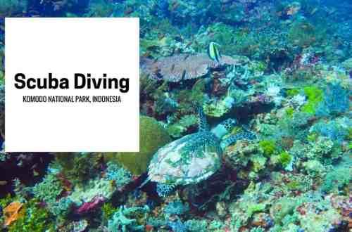 Scuba Diving Komodo National Park