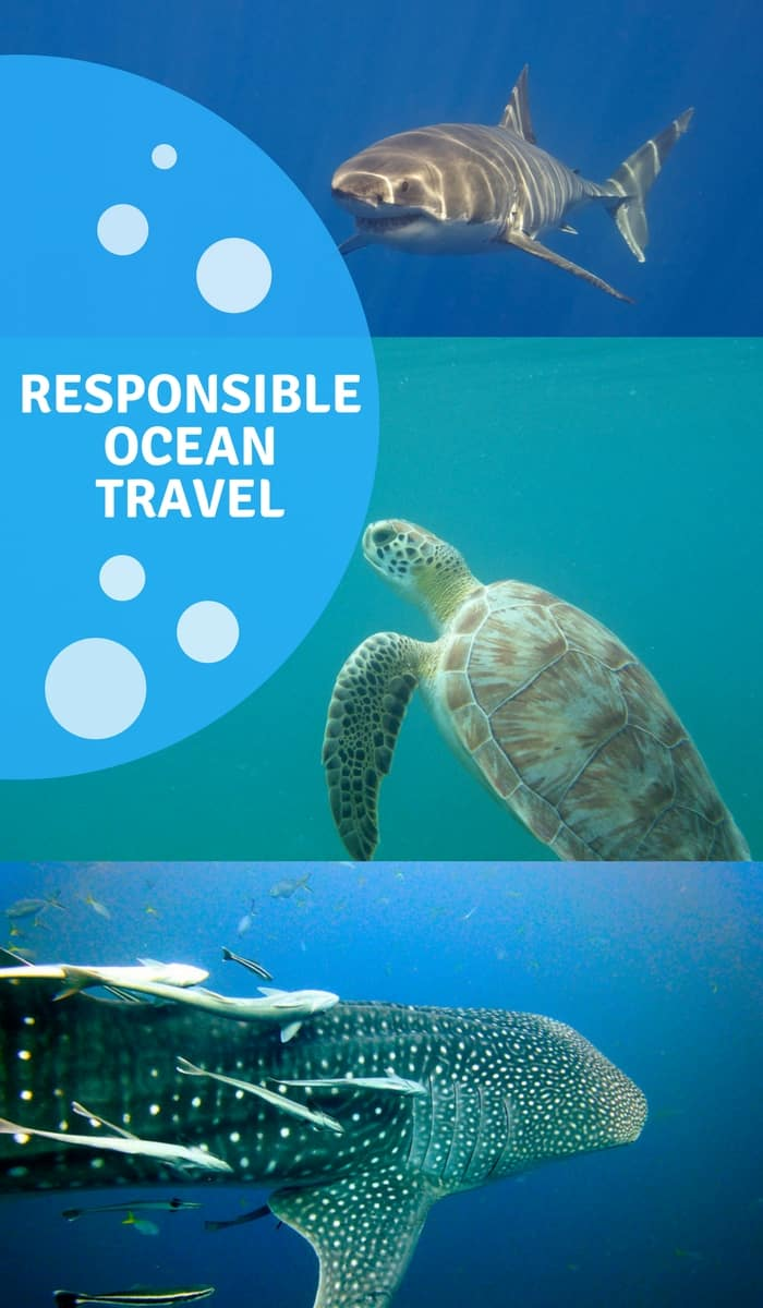 Responsible Ocean Travel
