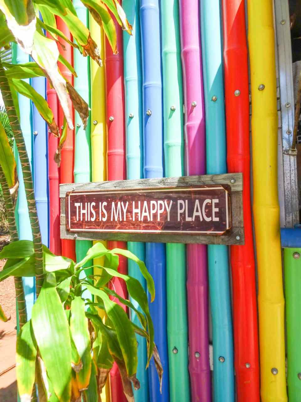 This is my Happy place rainbow coloured sign in Hawaii