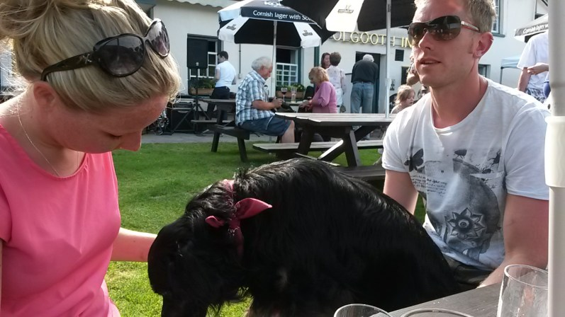 Enjoying the beer garden at the Polgooth Inn, Pentewan Valley, Cornwall