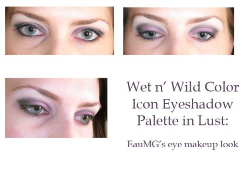 Wet N Wild Color Icon Palette Lust Look