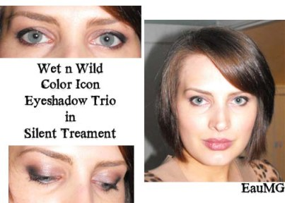 Wet n Wild Color Icon Trio Eyeshadow in Silent Treatment