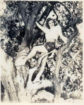 Marilyn Maxwell in tree