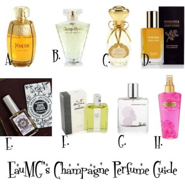 Champagne perfume guide