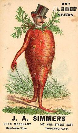 carrot postcard