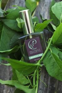 Providence Perfume Co. Branch & Vine