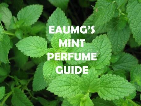 mint perfume guide