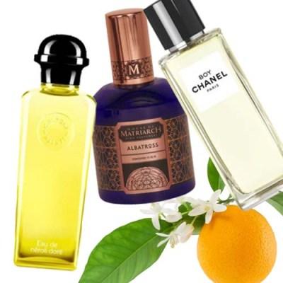 summer date night perfumes