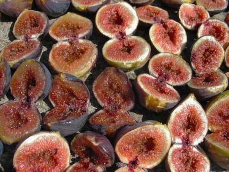 cut figs