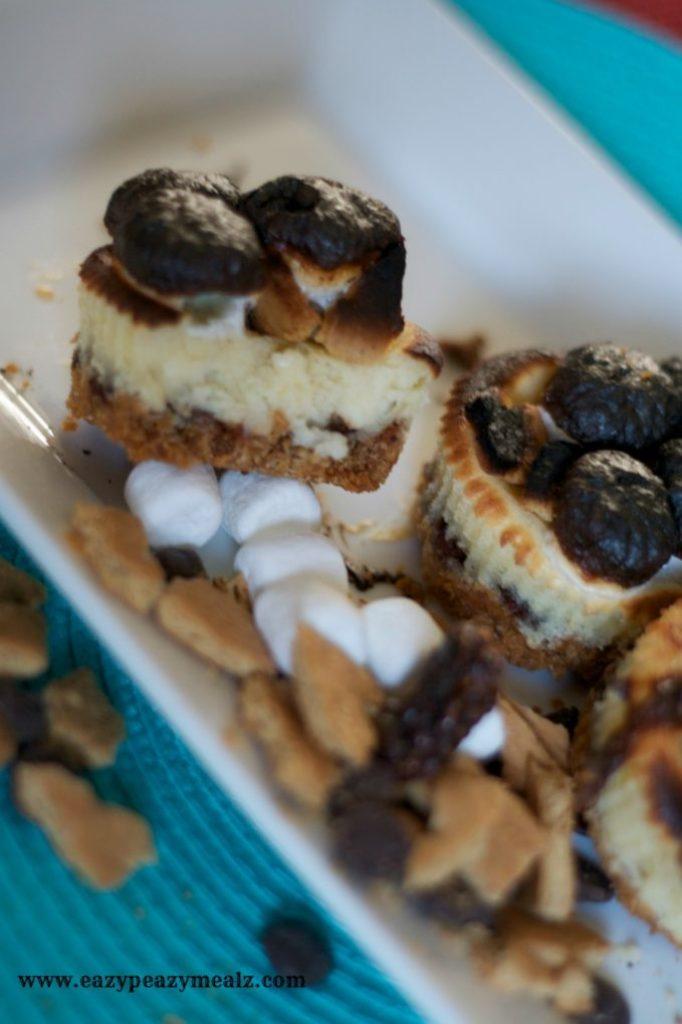 mini smore's cheesecakes