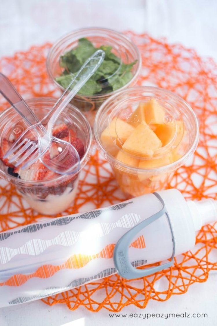Healthy on the go, snack cups for on the go, staying healthy while out and about