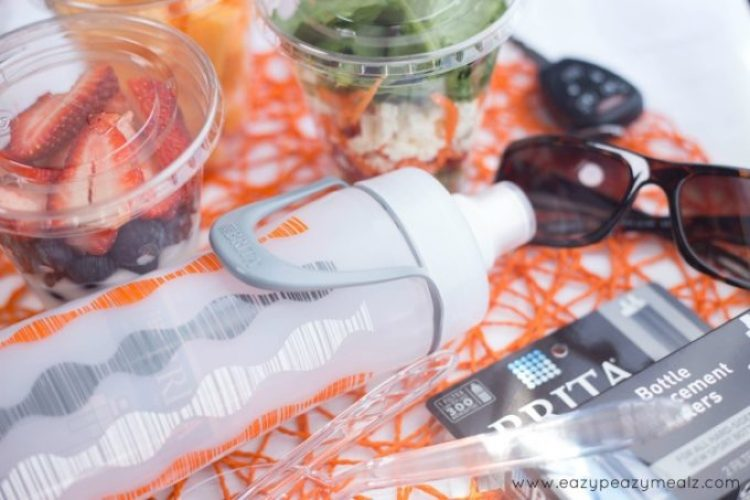 brita cups, healthy snacks and staying hydrated while on the go, travel snacks