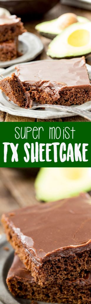 Texas Sheetcake that is super moist thanks to a fun swap of avocado for butter