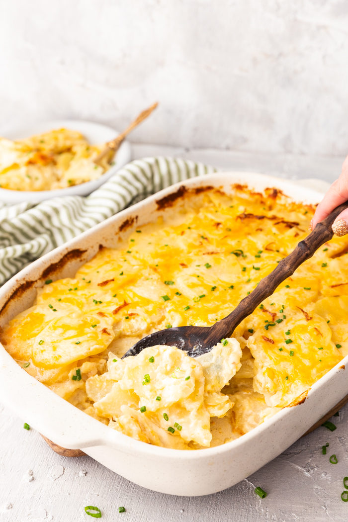 Easy scalloped or au gratin potatoes, these potatoes are loaded with cheese and creamy sauce and baked to perfection