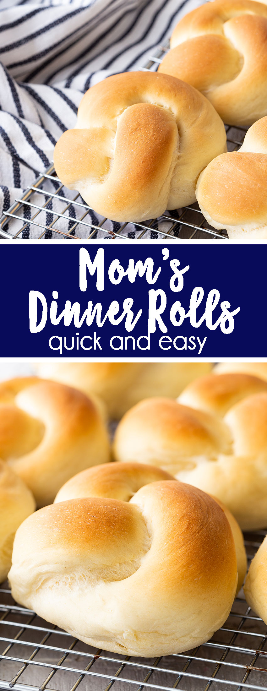 Dinner Rolls are the best thing you will have on your Thanksgiving table, you are going to love it.