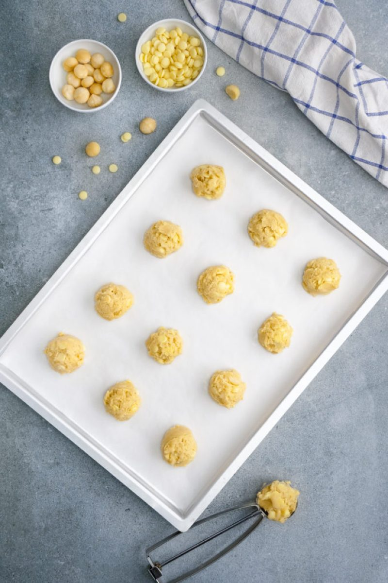 A tray full of unbaked white chocolate macadamia nut cookies