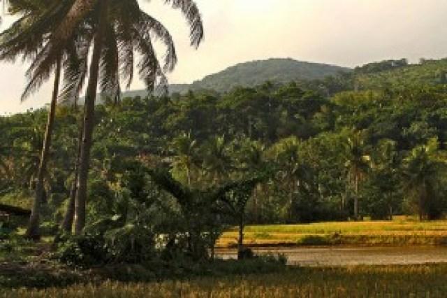 Mt. Bagasol, Calayan Island