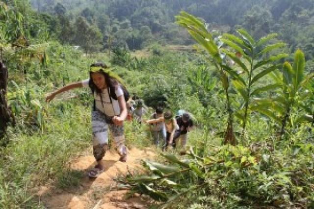 Jungle Trekking at Lojing Highlands