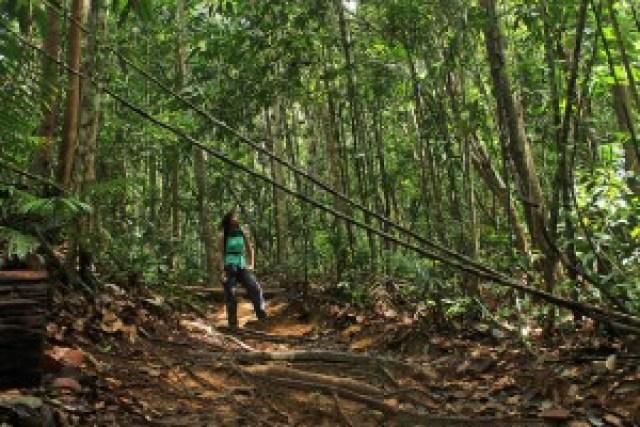 Hike to Bukit Teresik