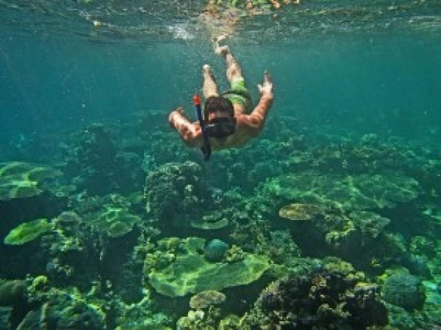 Atuayan Coral Garden