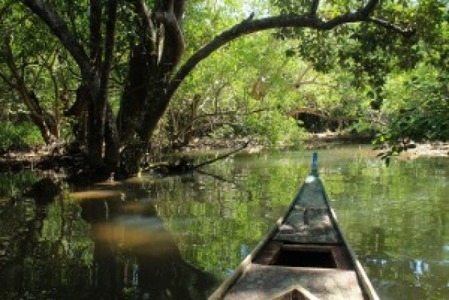 Bongsalay Mangrove Reserve