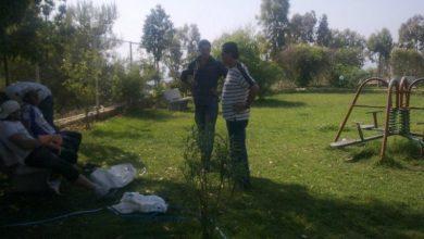 صورة بلدية برجا الشوف تجدد حديقة الوليد