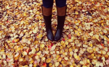 Scarves, Coats, & Boots! Oh My! Double Cash Back on Fall Fashion