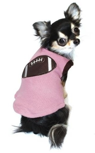 dog_football_sweater